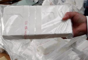Κοκαΐνη: 5 τόνοι μέσα σε… διακοσμητικά λουλούδια