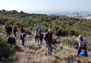 Θεσσαλονίκη: Φοιτητές ενώνουν τις δυνάμεις τους για την αναδάσωση!