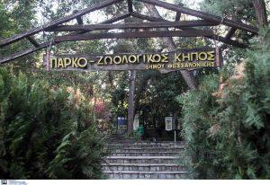 ΠΦΠΟ: Επιστολή στον Κ. Ζέρβα για τον ζωολογικό κήπο