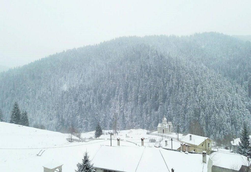 Χιόνια στα ορεινά των Τρικάλων (ΦΩΤΟ)