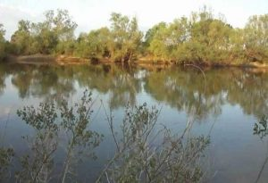 Έβρος: Νεκρός άνδρας ανασύρθηκε από τον ποταμό