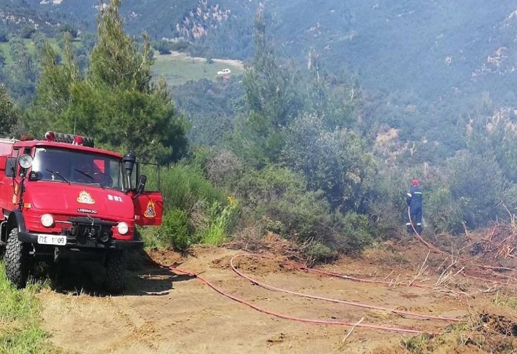 Ψαρά: Πυρκαγιά φούντωσε από τους ισχυρούς ανέμους