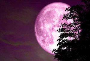 """""""Ροζ υπερπανσέληνος"""": Απόψε το μεγαλύτερο και πιο φωτεινό φεγγάρι του έτους"""