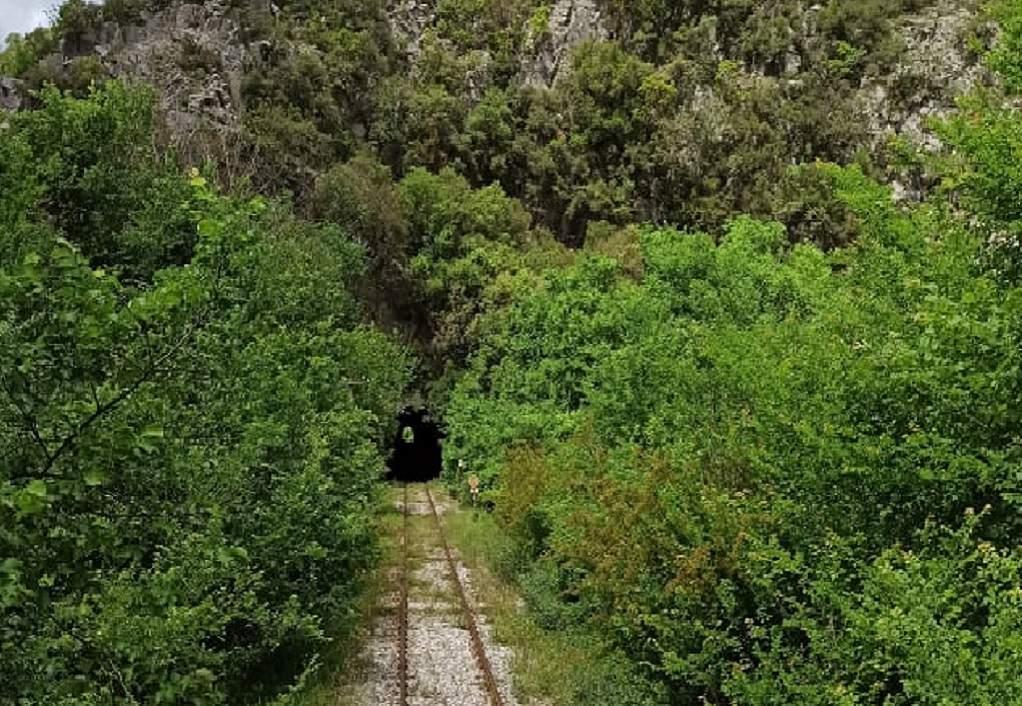 Το «πράσινο» χάλι στο σιδηροδρομικό δίκτυο του ΟΣΕ (video)
