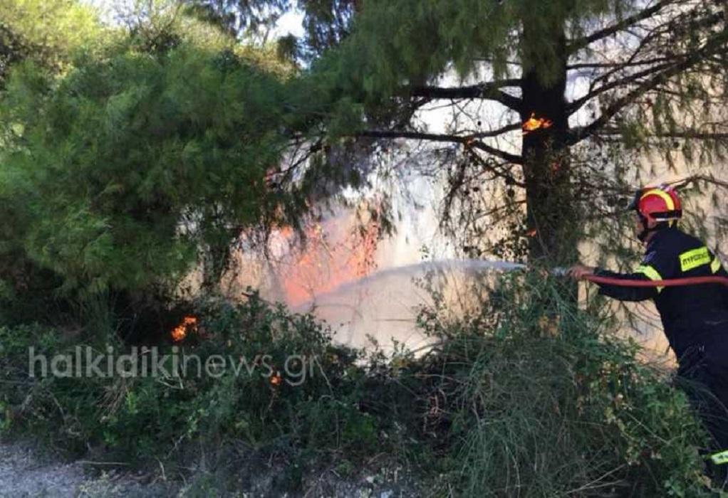 Μαίνεται η μεγάλη πυρκαγιά στη Σιθωνία