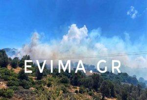 Σε ύφεση η φωτιά στην Εύβοια