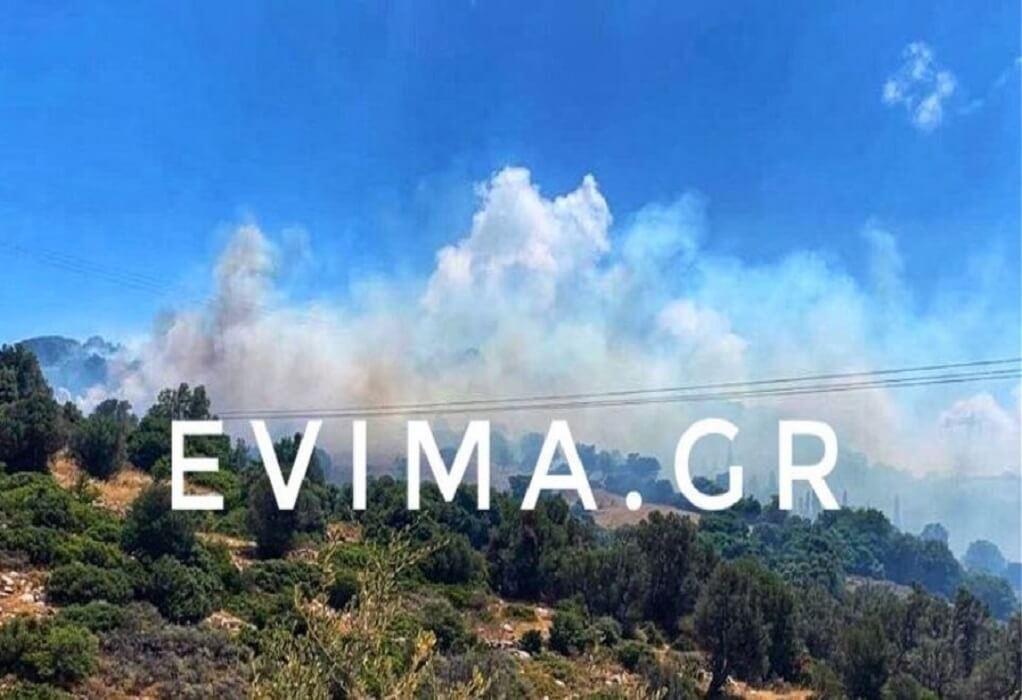 Εύβοια: Ανεξέλεγκτη η φωτιά – Ενίσχυση των εναέριων μέσων