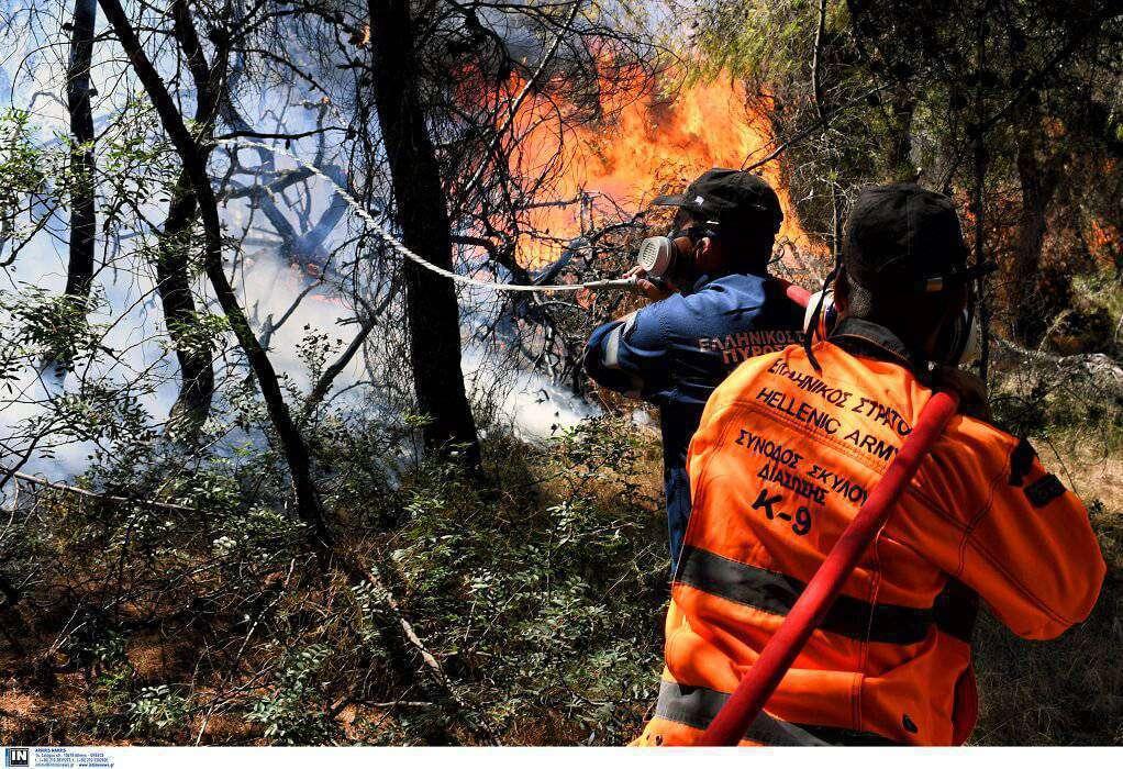 Σε εξέλιξη πυρκαγιά στη Χαλκιδική