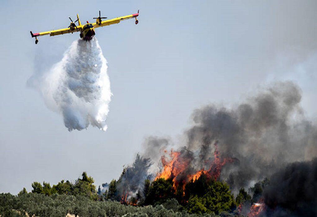 Φωτιά σε δασική έκταση στη Δυτική Μάνη