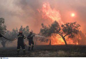 Πολύ υψηλός κίνδυνος πυρκαγιάς σήμερα – Δείτε τον χάρτη