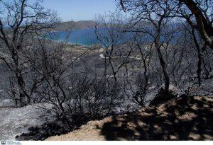 Μάνη: Κάηκε ζωντανή, ενώ προσπαθούσε να κάψει χόρτα