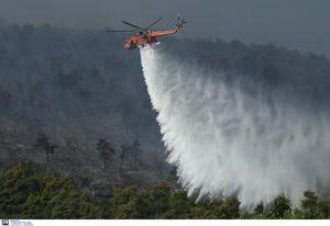 Σε εξέλιξη πυρκαγιές σε Σπέτσες και Μεσσηνία