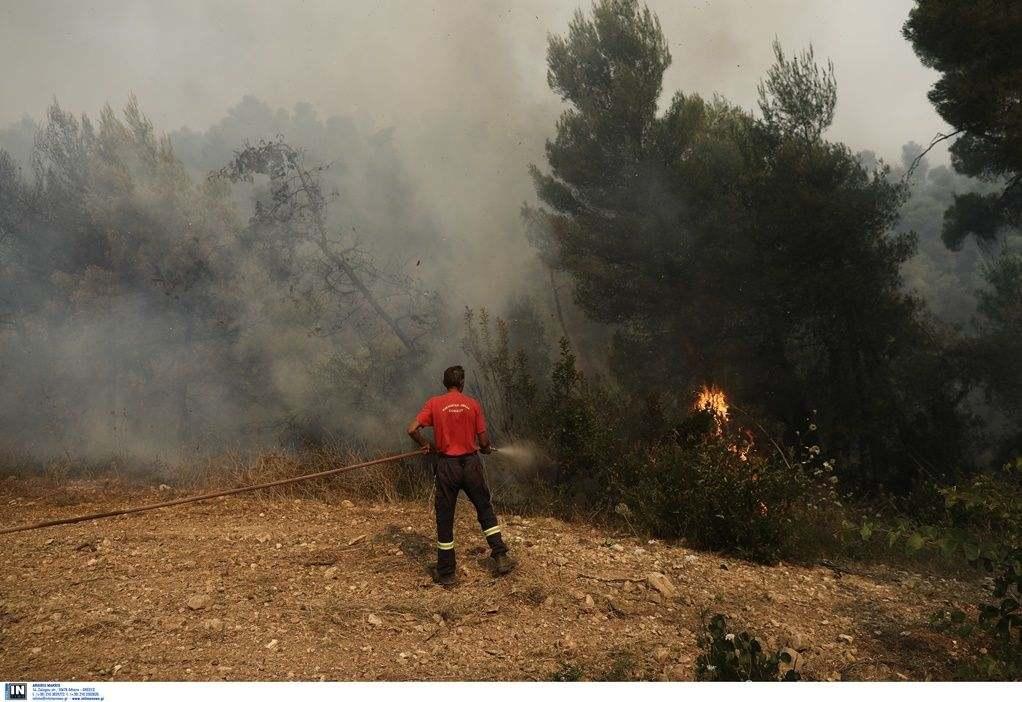 Φωτιά στη Μάνη – Εκκένωση οικισμού