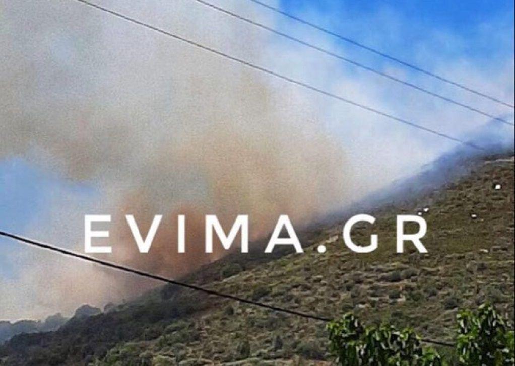 Φωτιά-Κάρυστος: Ενισχύθηκαν οι δυνάμεις της Πυροσβεστικής (VIDEO)