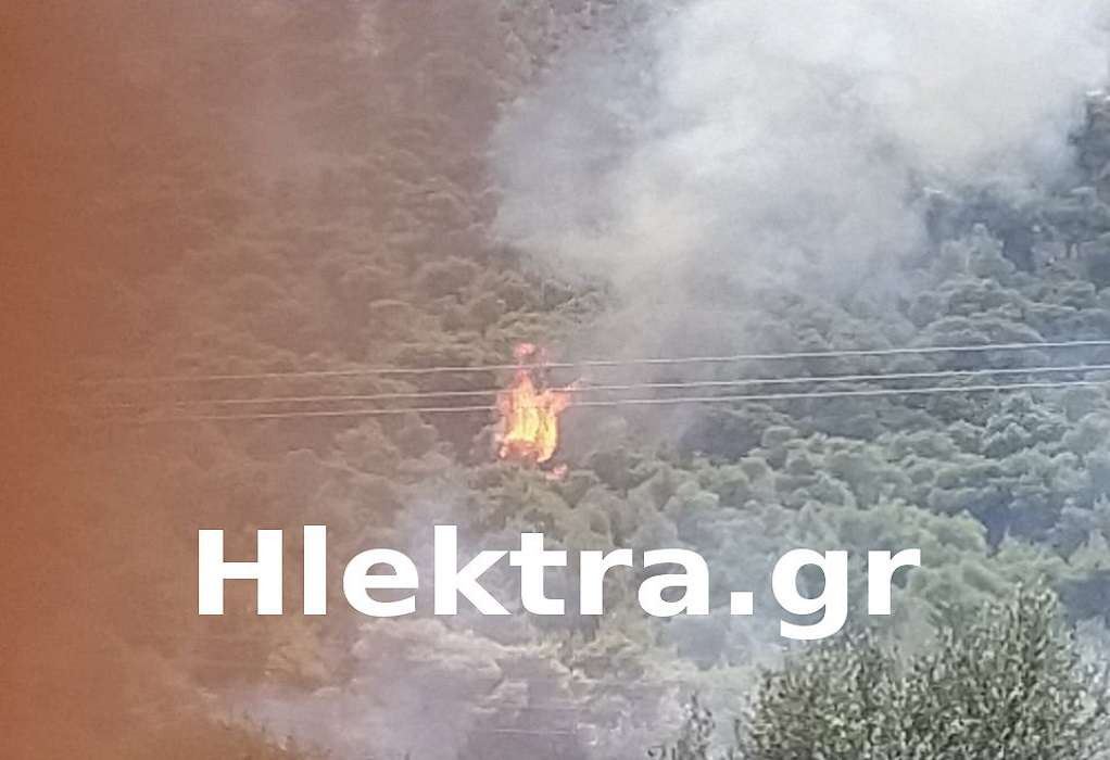 Φωτιά στις Κεχριές: Εκκενώνεται η κατασκήνωση (ΦΩΤΟ)