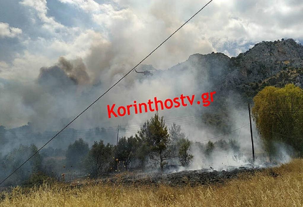 Φωτιά στις Κεχριές: Ενισχύονται οι δυνάμεις της Πυροσβεστικής (ΦΩΤΟ)