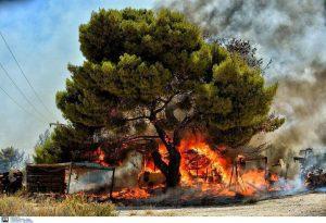 Δεκάδες οι πυρκαγιές το τελευταίο 24ωρο