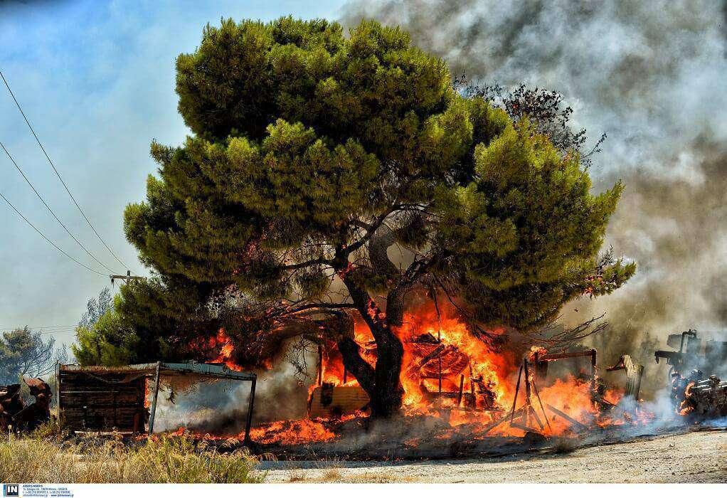 Μείωση πυρκαγιών το τελευταίο 24ωρο