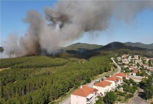Σάπες: Ολονύχτια μάχη με τις φλόγες στο πευκοδάσος