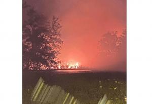 ΒΙΠΕ Σίνδου: Φωτιά έκαψε 150 στρέμματα