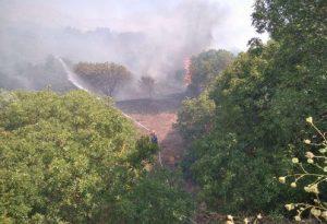 Χίος: Σε ύφεση η πυρκαγιά