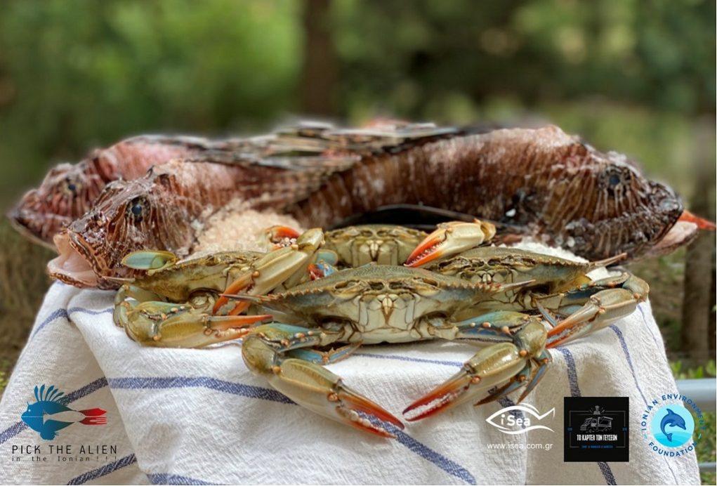 Φά' το πριν τα φάει – Γαστρονομία εναντίον ξενικών ειδών