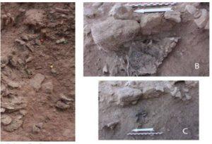 Στο Ισραήλ τα αρχαιότερα ίχνη αποτέφρωσης νεκρού