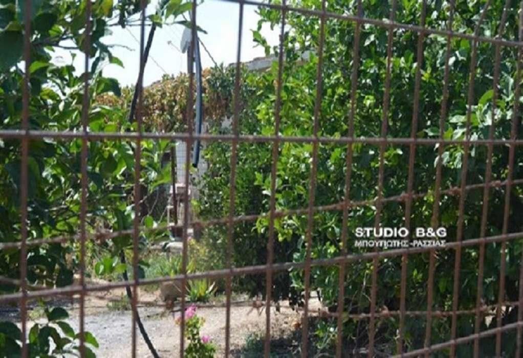 Έρευνα για τη δολοφονία του 60χρονου στο Άργος