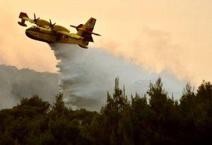 Πάνω από 40 δασικές πυρκαγιές