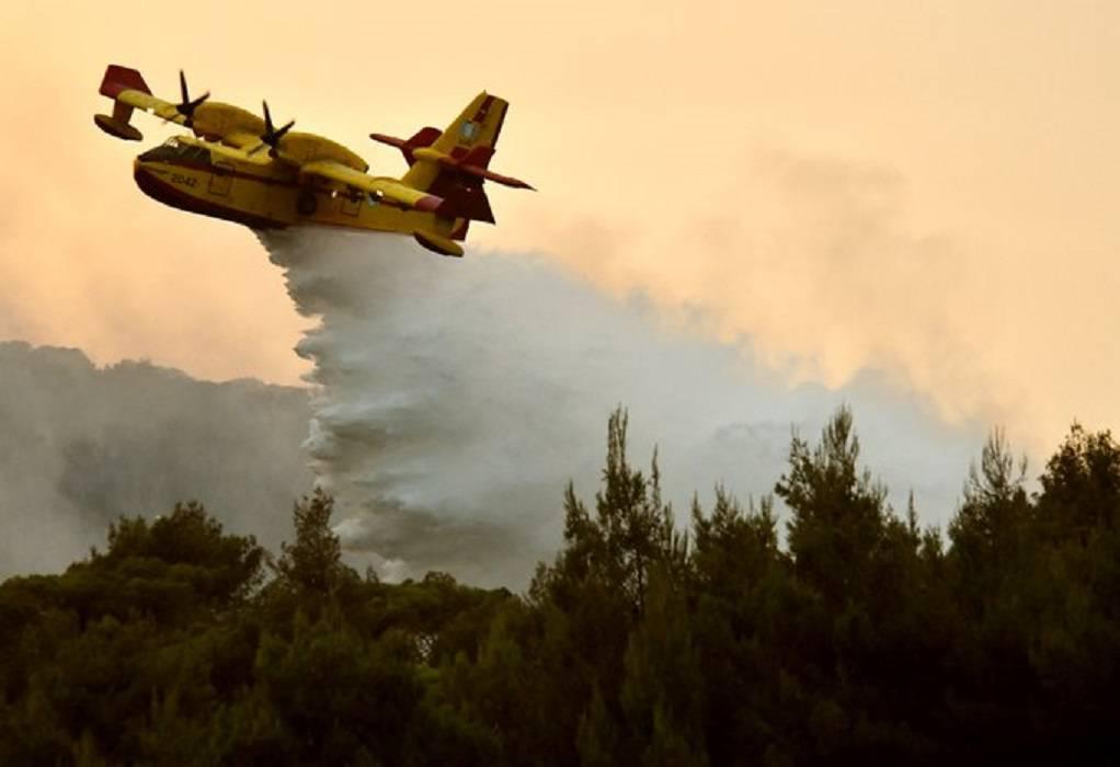 Πυροσβεστικό Σώμα: Πάνω από 90 πυρκαγιές το τελευταίο 24ωρο