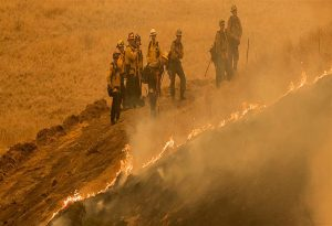 Καλιφόρνια: Εκατοντάδες πυρκαγιές εν μέσω ιστορικού καύσωνα! (ΦΩΤΟ)
