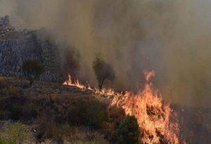 Πολύ υψηλός κίνδυνος πυρκαγιάς και την Παρασκευη – Δείτε τον χάρτη