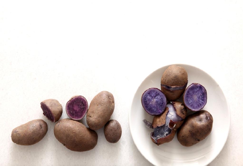 Μπλε και κόκκινες πατάτες στο αγρόκτημα του Παν. Θεσσαλίας!