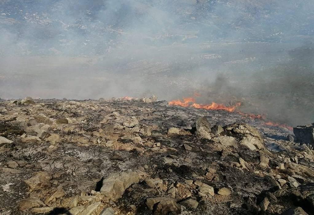 Οι περιοχές της χώρας που παρουσιάζουν αυξημένο κίνδυνο εκδήλωσης πυρκαγιών
