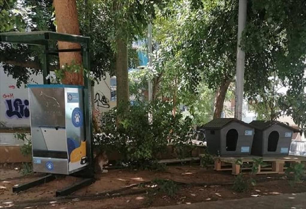 Στέγη για γάτες από τον δήμο Αθηναίων