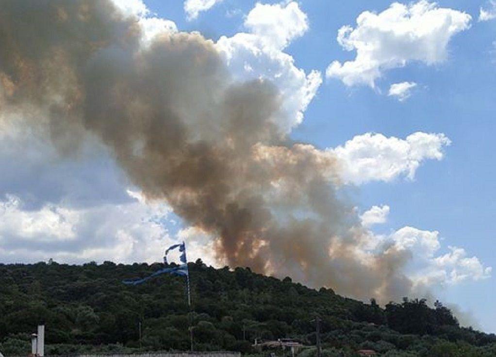 Φωτιά στην περιοχή Χανδρινός Μεσσηνίας (ΦΩΤΟ)