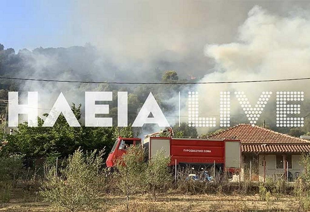 Ηλεία: Μάχονται για να σώσουν σπίτια οι πυροσβέστες (VIDEO)