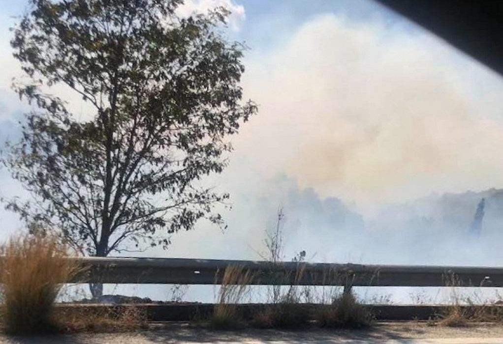 Πυρκαγιές σε Ηλεία και Λακωνία