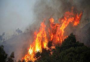 Πολύ υψηλός κίνδυνος πυρκαγιάς την Τρίτη – Δείτε τον χάρτη