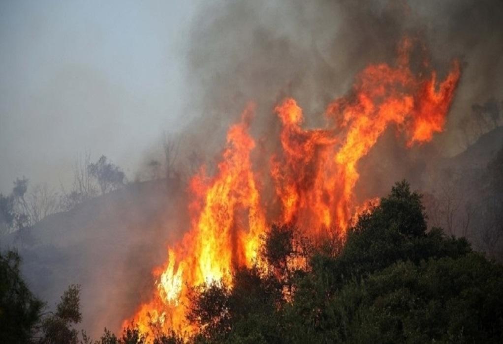 Σαλαμίνα: Φωτιά στον Άγιο Νικόλαο κοντά σε κατοικημένη περιοχή