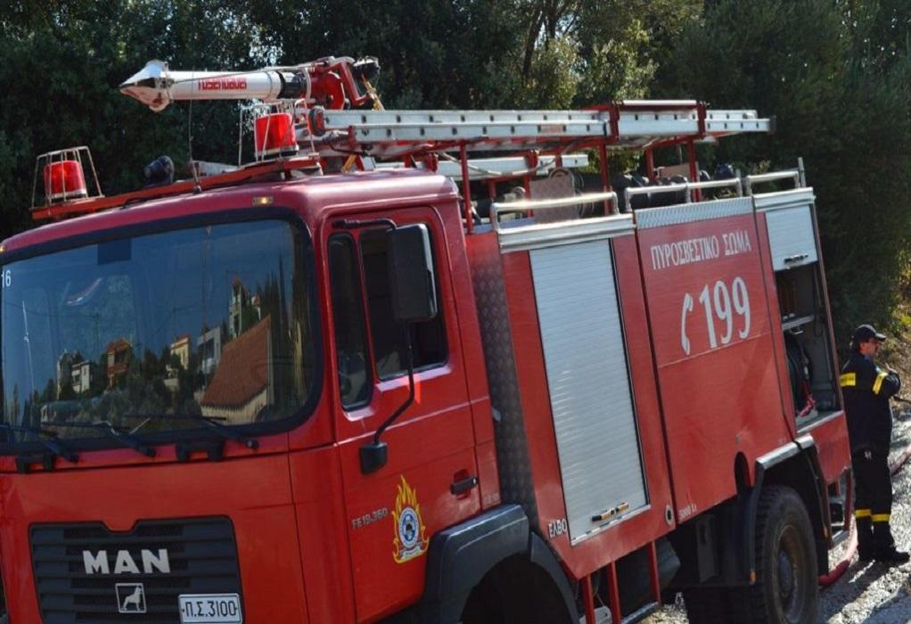 Πυρκαγιά στο Πευκοχώρι Χαλκιδικής
