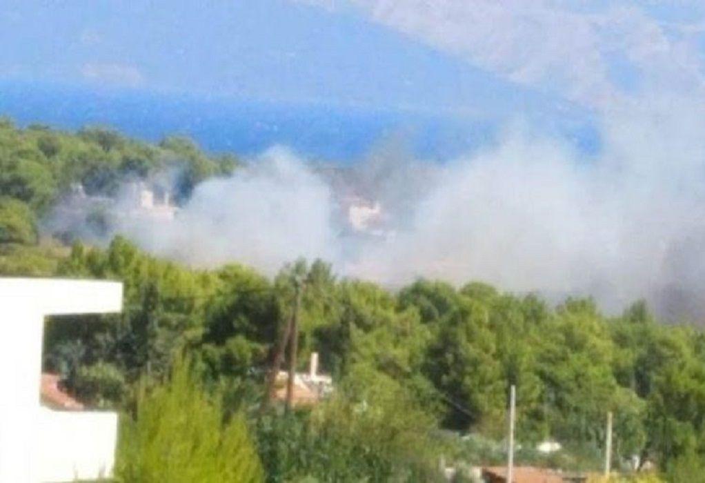 Συναγερμός στην Πυροσβεστική για φωτιά στη Ραφήνα