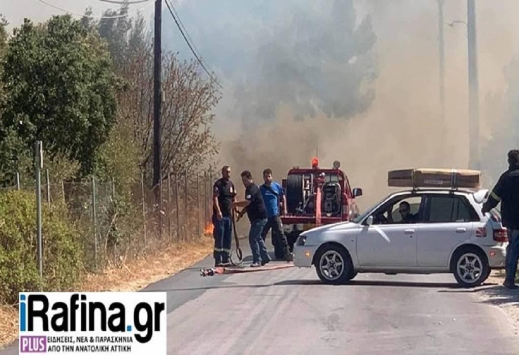 Πυρκαγιά στη Ραφήνα: Εκκενώνεται οικισμός (ΦΩΤΟ-VIDEO)