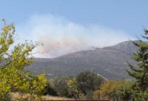 Φωτιά στην Κερατέα: Εκκενώνεται και δεύτερος οικισμός (ΦΩΤΟ)