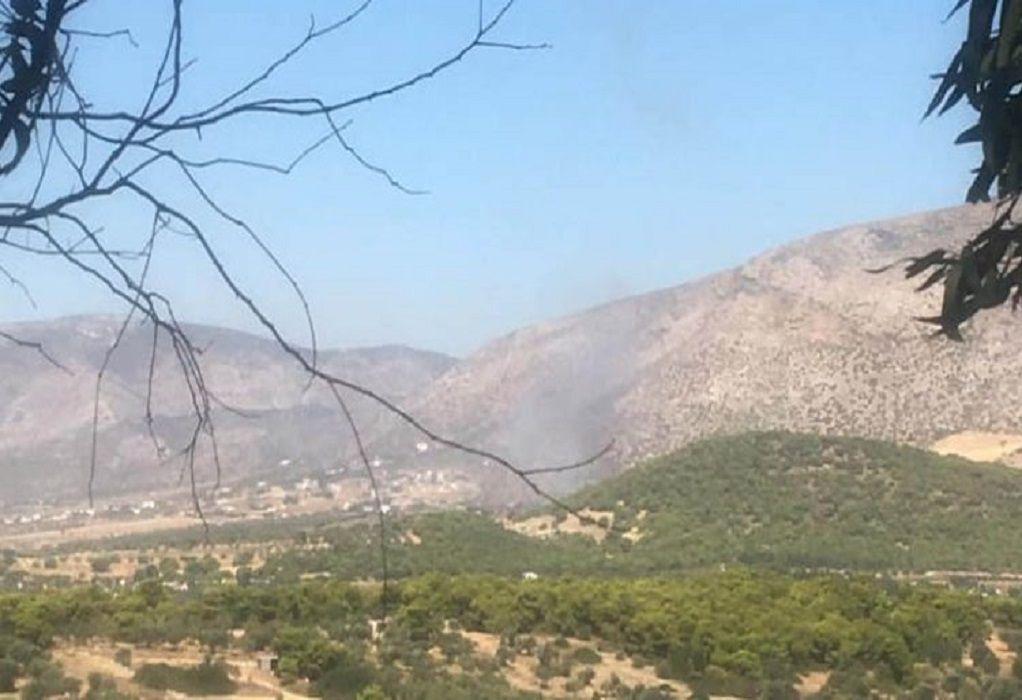 Φωτιά στην Κερατέα: Εκκενώνεται ο οικισμός Φέριζα