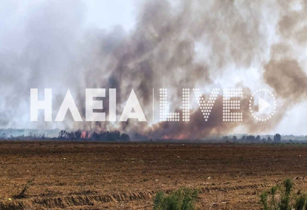 Σε εξέλιξη μεγάλη φωτιά στη Μανωλάδα