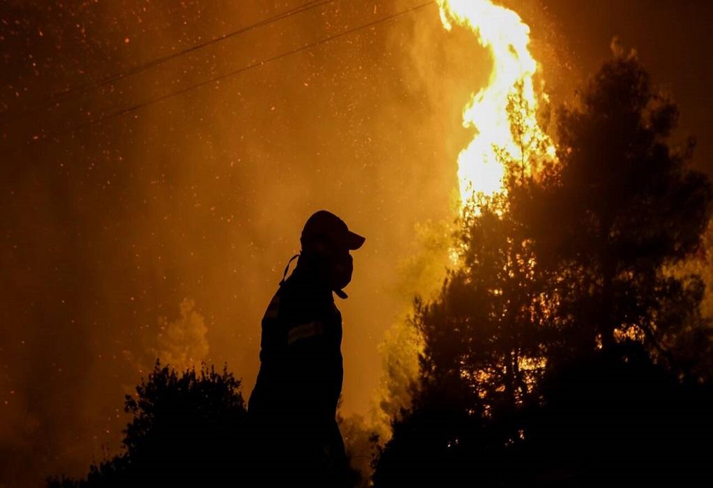 Αλβανία: Ένας νεκρός από τις δασικές πυρκαγιές στο Αργυρόκαστρο