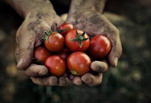 Δ.Θεσσαλονίκης: Ημερίδα για την Παγκόσμια Ημέρα Διατροφής