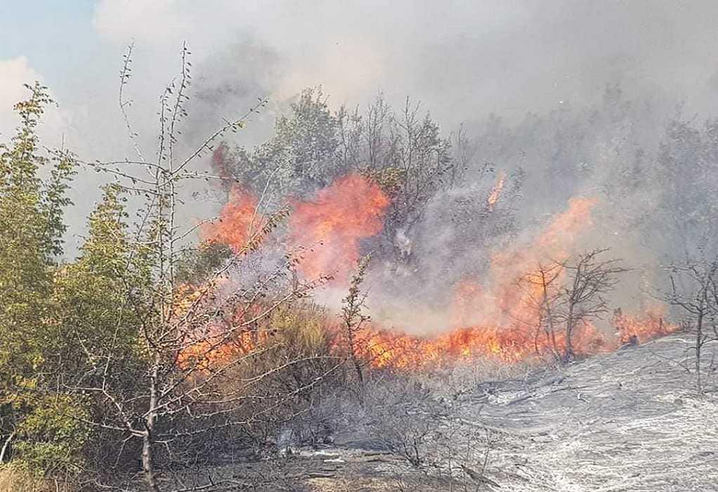 Φωτιά σε κτίριο μέσα στο άλσος Καισαριανής