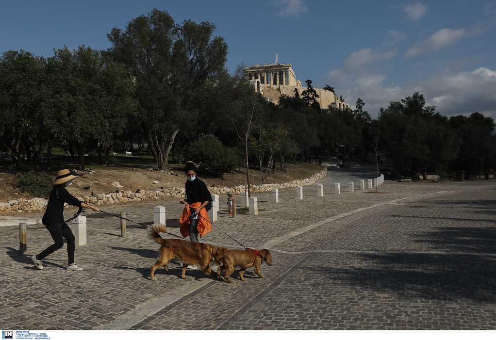Lockdown: Τι συμβουλεύουν οι κτηνίατροι για τα κατοικίδια ζώα και τις βόλτες